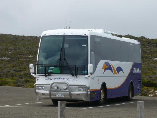 SeaLink Kangaroo Island: bus