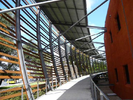 National Wine Centre of Australia: exterior