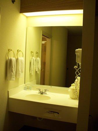 Sleep Inn Nashville Airport: Bathroom sink