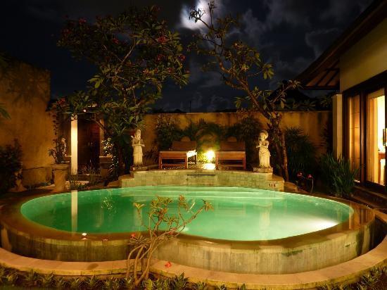 The Sanyas Suite Seminyak: pool junior suite