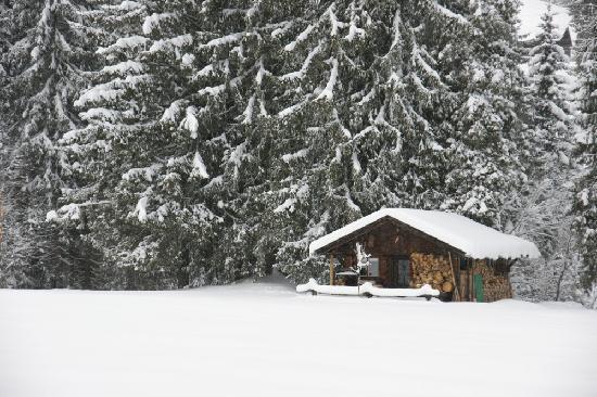 Hotel Erlebach: Wunder schöne Landschaft