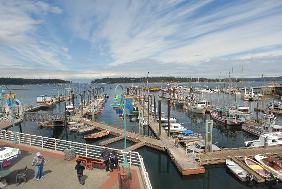 Long Lake Waterfront B&B: one of many Marinas in Nanaimo BC Canada