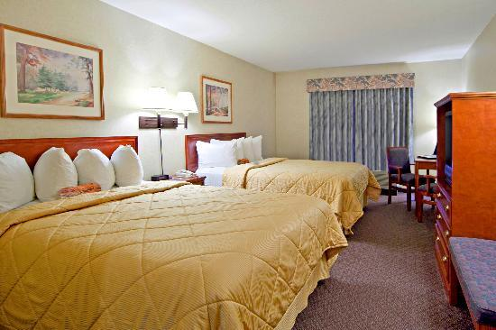 Comfort Inn & Suites South: Standard Room