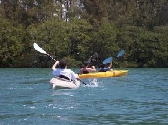 Almost Heaven Kayak Adventures: Family fun kayaking