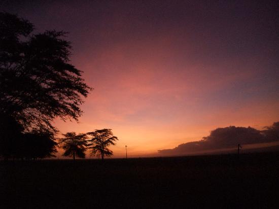 Национальный парк Амбосели, Кения: 朝焼けです!空がオレンジ色に。