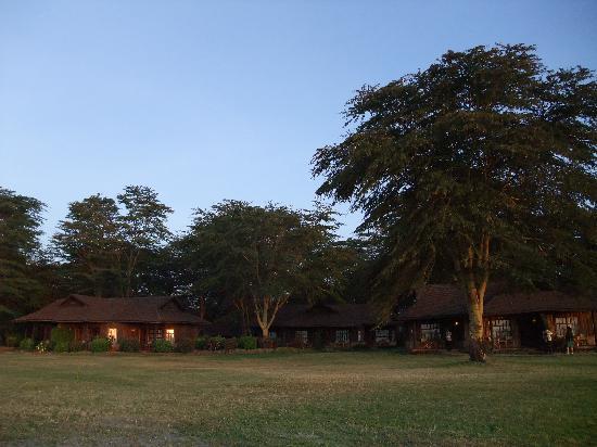 Amboseli Eco-system, Kenya: ロッジはこんな感じです。