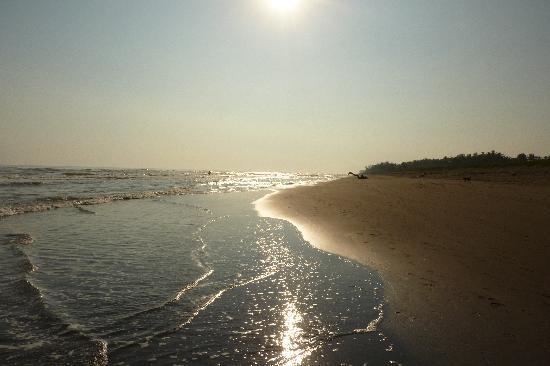 Hotel Azucar: La playa