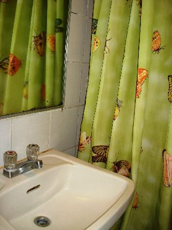 Tower Inn Davao: shower curtain - a touch of green