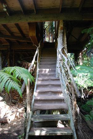 Treehouse Skye: 入り口