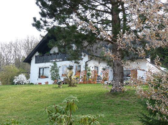 Landhaus Hubertus: Vue extérieure