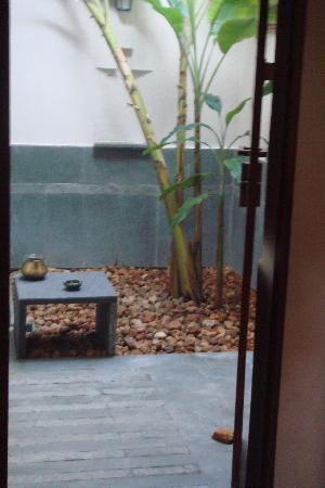 Gopis Farm: Banana tree in bathroom