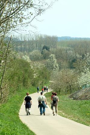 Limburg Province, Belgium: Walking in Haspengouw