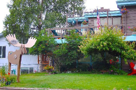 Walkabout Town B&B: Quiet downtown neigborhood that moose visit.