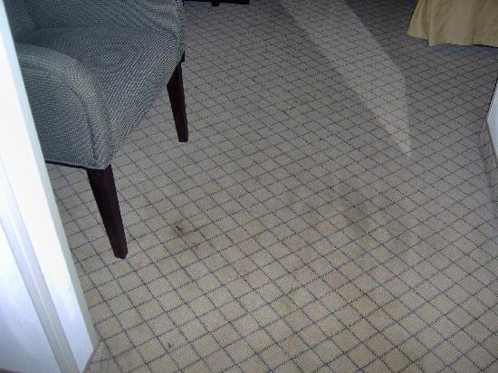 Holiday Inn Express in Wilkesboro: Large black stains on the carpet.
