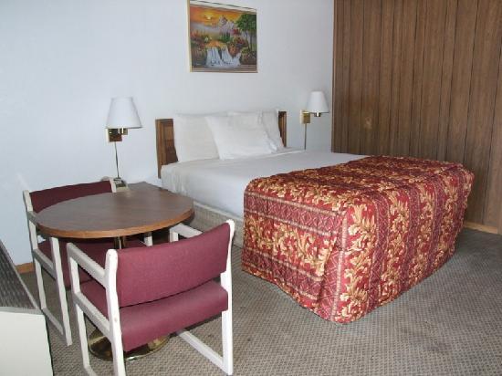Mountain View Inn : single queen