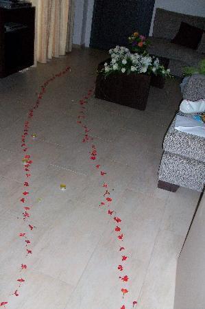 Elounda Solfez Villas: flowers..