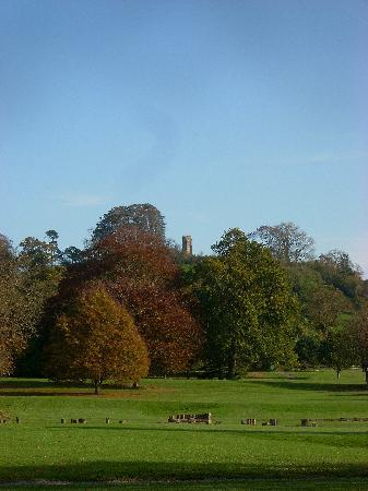 Old Oaks Touring Park and Glamping: The Tor