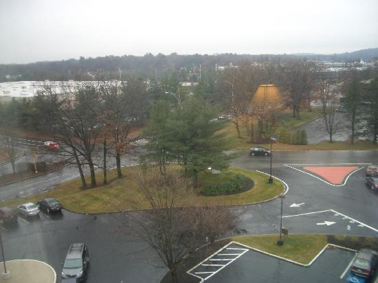 "Hampton Inn Boston-Natick: a bit of ""park"" to look at"