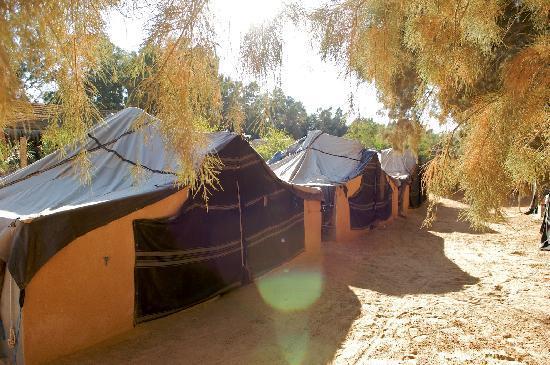 Camp Yadis Ksar Guilane : Bienvenue