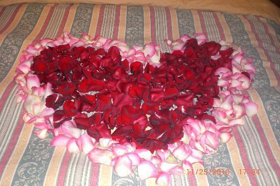 A la Carte Bed & Breakfast: Rose petals on the bed