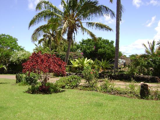 O'tai Hotel: Jardin al cual da la habitación