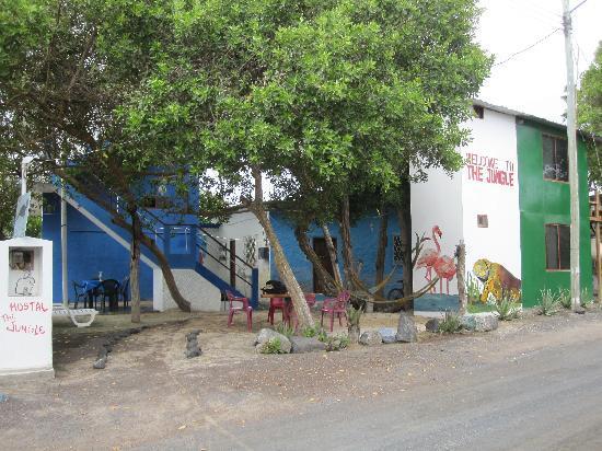 Hostal La Jungla: vista desde la calle