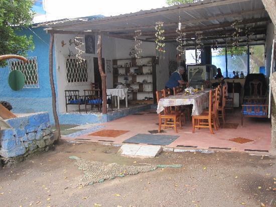 Hostal La Jungla: lugar de reunion y desayuno ( vista desde la calle )
