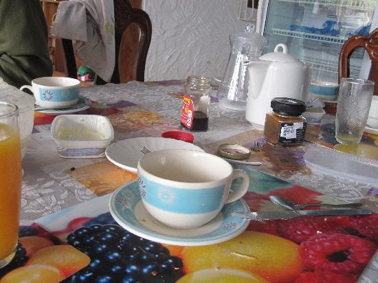 Hostal La Jungla: el desayuno lo prepara cada uno con muchas cosas a disposicion