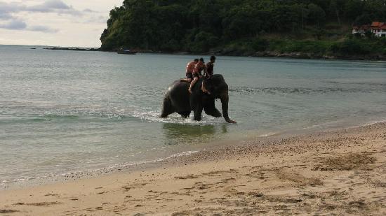 Anda Lanta Resort: Beach Activity