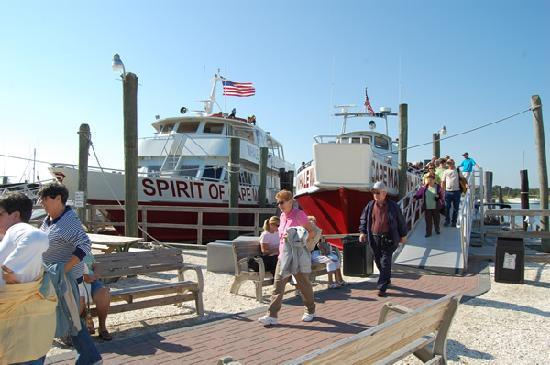 Cape May Whale Watcher : Our Loading Area at Miss Chris Marina