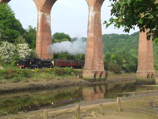 Captain Cook's Haven : Magical Steam Railway