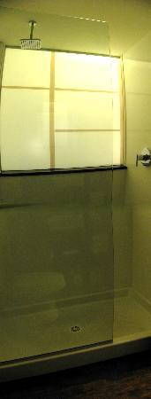 Red Roof Inn Locust Grove: Nice full shower, half glass partition