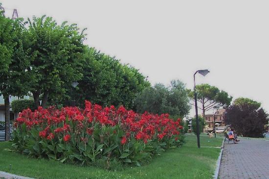 Giardini fioriti lungo la passegiata a valle del viale - Foto di giardini fioriti ...
