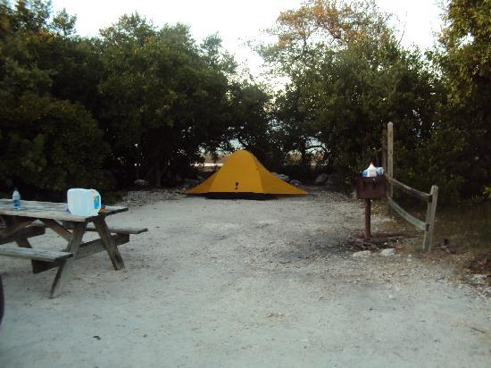 Bahia Honda State Park Campgrounds: Bayside Campground