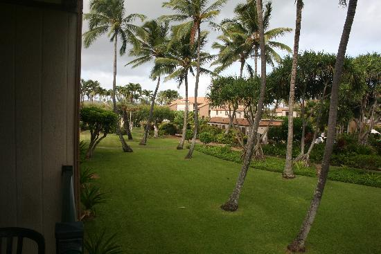 Pono Kai Resort: View from Deck