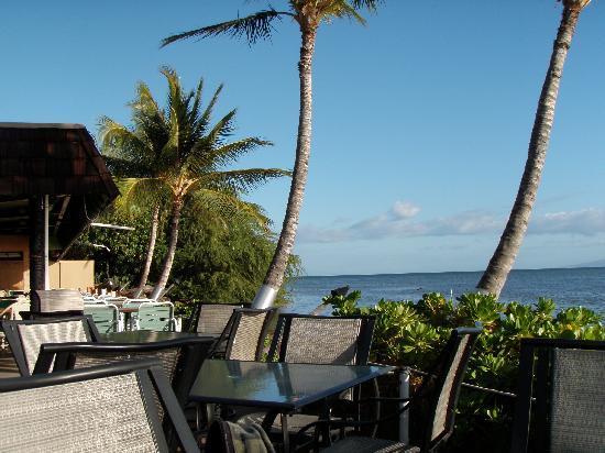 Hula shores restaurant and views