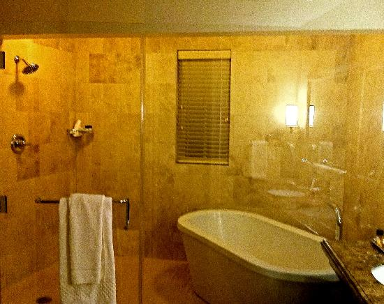 Hotel ZaZa Houston: The bathroom-breathtaking actually took these pictures for the house we are building. Tub right
