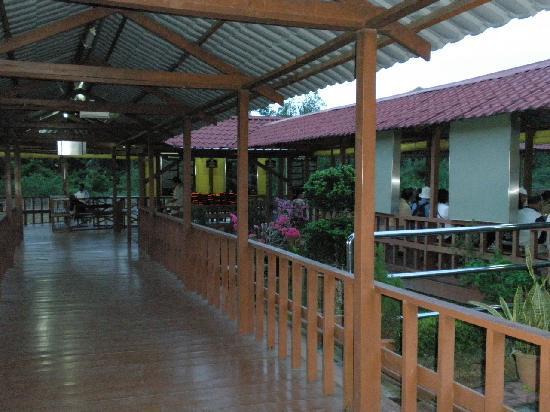 Kuala Selangor Nature Park (Taman Alam Kuala Selangor): 船乗り場