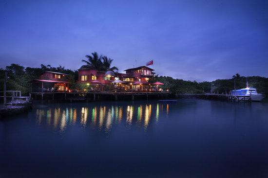 Red Mangrove Aventura Lodge : Sunset at Puerto Ayora