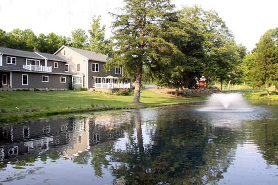 The RoseMary Inn: View of the Pond
