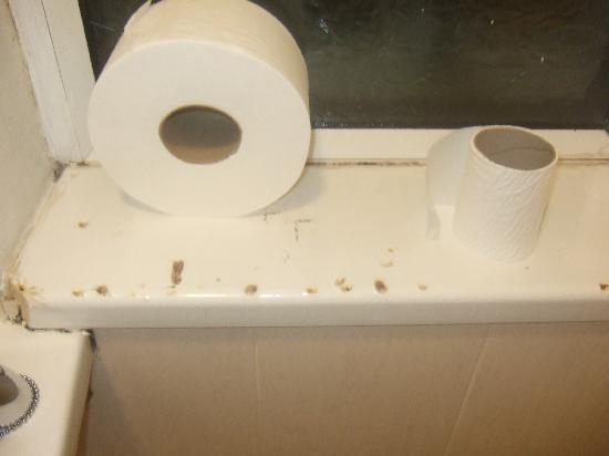 The Grove: bathroom window sill