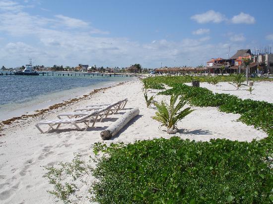 Zona de Buceo: Vista des de la playa