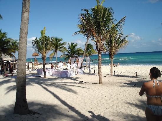 Azul Beach Resort The Fives Playa Del Carmen: Wedding site