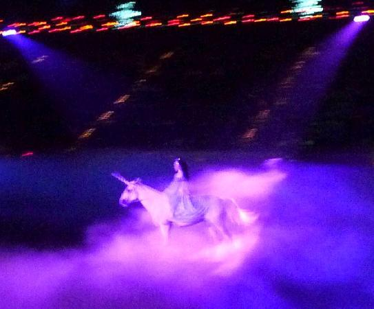 Kissimmee, FL: Unicorn
