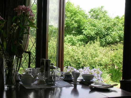 Bosvean House: Breakfast overlooking the garden