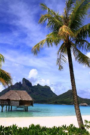 Four Seasons Resort Bora Bora: peaceful and relaxing