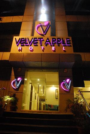 Velvet Apple Hotel: The facade