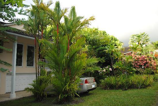 Papalani: View from outside