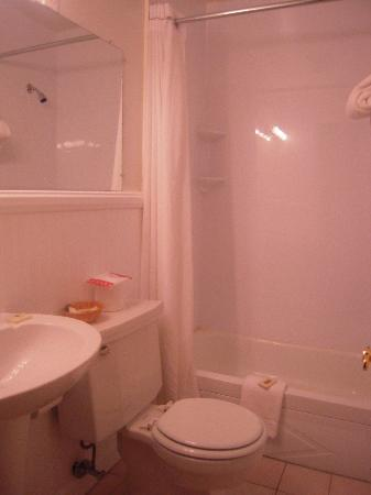 Cocca's Inns & Suites Albany Airport: Petite Bathroom (Exterior room)