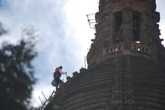 Salamanca, Spanien: el mariquelo subiendo a la catedral